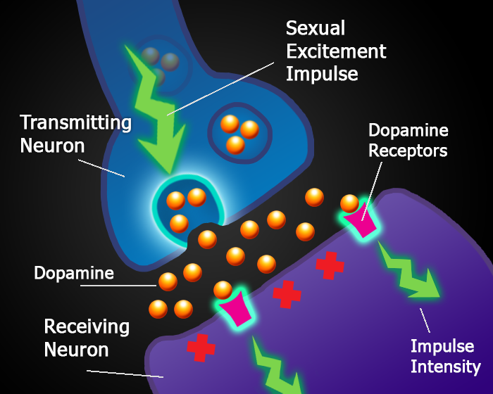 damaged dopamine receptors low arousal