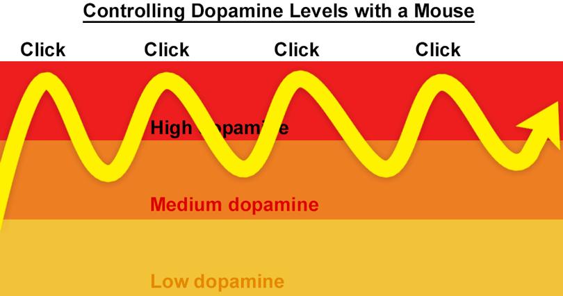 control dopamine levels