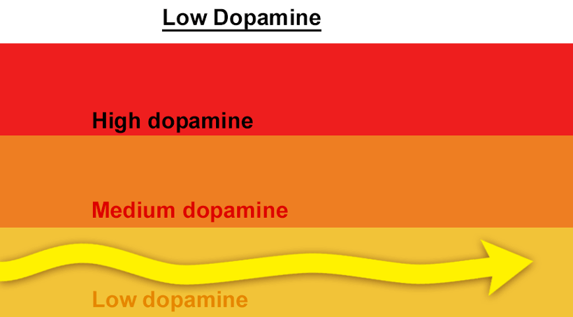 low dopamine level