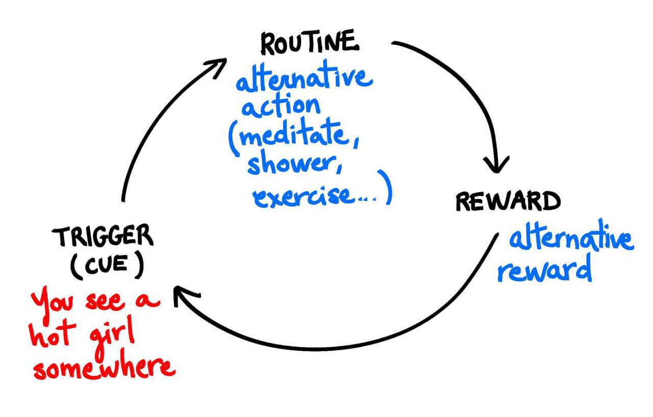 habit cycle good